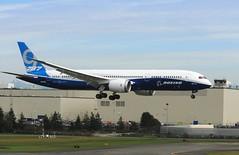 Boeing 787-9 N789EX (moonm) Tags: aircraft boeing painefield kpae 7879 n789ex