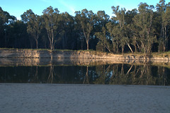 Reflections in the Murray River at sunset (Joybelle007) Tags: trees sunset water reflections nikon pretty murrayriver d90