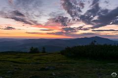DSC_3307 (czargor) Tags: mountains landscape hill mountainside beskidy inthemountain dogtrekking beskidzywiecki