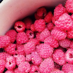 Summer time!  (olesjafan) Tags: countrylife berries raspberries yammy irkutsk siberia summertime red