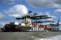 NYK Diana DST_4595 (larry_antwerp) Tags: psaterminal container europaterminal antwerp antwerpen       port        belgium belgi          schip ship vessel        schelde