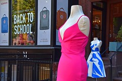 Back to School? (AntyDiluvian) Tags: boston massachusetts backbay street newburystreet shop store boutique backtoschool sign dress decoletage mannequin irony