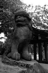 L1000536 (Zengame) Tags: leicat cc creativecommons japan leica summicron summicron235 tokyo  235  t     jp