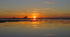 IMG_0033x (gzammarchi) Tags: italia paesaggio natura mare ravenna lidodidante alba sole nuvola riflesso