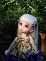 Chispita (kao_chanita) Tags: bjd doll knkdolls artistdoll chispita cute yosd tiny kennokokoro
