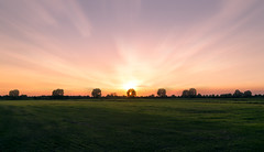 Sun behind the tree (RigieNL) Tags: sundown sunset zon zonsondergang gennep nederland netherlands holland hdr limburg sony a6000 sonya6000 ngc platinumheartaward
