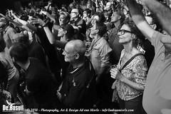 2016 Bosuil-Het publiek bij De Dijk 10-ZW