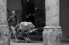 Le strade di Bologna_01 (Gaia83) Tags: bologna street veterinarifotografi