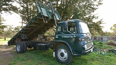 Bedford tray (Ross-J) Tags: bedford tkbedford tippingtray traytruck lorry