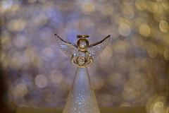 DSC_5163 (Milena Z) Tags:          442      angelo angel colore color luce giocodiluci ombra bokeh helios helios442 manuallens senzafiltri vladikavkaz
