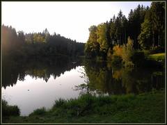 Rhenenmhlensee (almresi1) Tags: schwbischfrnkischerwald schwbischgmnd ostalb spiegelung see lake landscape germany