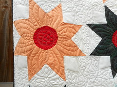 RED EYE EIGHT POINT STAR QUILT - Quilt Rescue by DLQ (DLQuilts) Tags: redeyeeightpointstarquilt redeyequilt dlq dlquilts dlquiltrescue quiltrescue afterquiltrescue statlerandfreehand quiltrescueinprogress statlerallysbloom after mothergoose mothergoosethread blendingthread taupethread