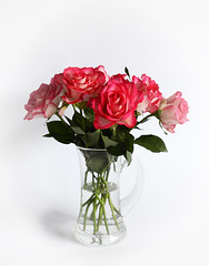 Roses Mk II (PhotosbyDi) Tags: roses vase floral whitebackground stilllife flowers blooms pink nikond600 nikonf282470mmlens