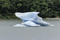 Mendenhall Glacial ice. (Alan Vernon.) Tags: mendenhall glacier ice iceberg berg blue glacial juneau alaska landscape scenic