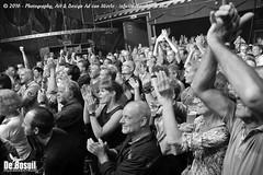 2016 Bosuil-Het publiek bij De Dijk 8-ZW