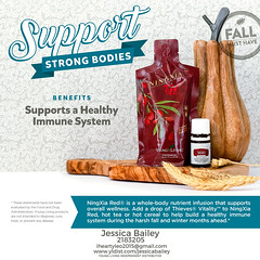 03-Thieves Vitality & NingXia Red (Jessica Bailey YLEO) Tags: yleo essential oils young living autumn fall recipes wellness oil oily mom body system support thieves vitality ningxia red
