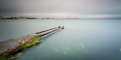 _APR1320 (www.adamoprieto.es) Tags: agua alcudia costa embarcadero esbarcares horizontal mallorca mar mediodia orilladelmar paisajemarino pantalan pasarela algasverdes