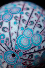 Blue Moonflowers (Katy David Art) Tags: pysanky pysanka blue moonflowers turquoise red black white goose egg eggshell aniline dye beeswax batik folk art fine floral flower