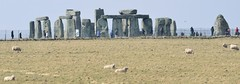 2013 04 03 09 Stonehenge and Crofton (Mark Baker.) Tags: uk england project photo day baker sheep mark photograph stonehenge photoaday april 365 wiltshire wilts 2013 picsmark