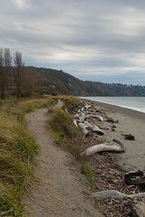 Stormy path (Denzil Burriss) Tags: travel november vacation beach canon washington northwest 2012 seattlearea 5d3 5diii