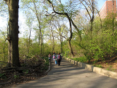 Morningside Park, 7:45 a.m., 26 April 2013 (jschumacher) Tags: nyc morningsidepark