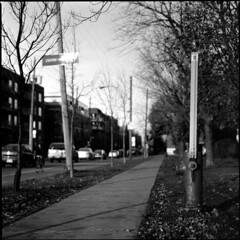 Rue Saint-Gregoire/ Parc Laurier (BG Sixtyniner) Tags: street bw white canada black 120 film analog mediumformat quebec montreal hasselblad roll mf 50 rodinal laurier parc ilford cf 120mm 1150 panf 500cm carlzeiss standdevelopment adonal macroplanar
