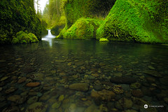 Punch Bowl Falls (Timescapes.us) Tags: flowers sunset oregon portland moss bowl canyon falls columbiariver cascades mthood pacificnorthwest streams punch hoodriver columbiarivergorge punchbowlfalls nationalscenicarea timescapes wahclellafalls lushlandscape bernardchen