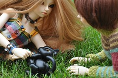 Time together (Story) (emmr_ {new account}) Tags: pet cat cd bjd wong mnf minifee seorin ryeon