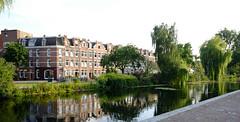 DSCF1308.jpg (amsfrank) Tags: amsterdam oost people candid summer sunshine