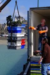 DSCF1464 (Jc Mercier) Tags: pche retourdepche fishermen marins cancale