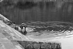 Agastya Lake@Badami (Sudhir i in the sky :)) Tags: badami agastyalake monochrome