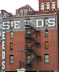 Seeds / Denver (kenjet) Tags: colorado denver seeds brick downtown city architecture structure firescape windows