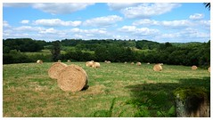 Paysage Corrèzien (mibric) Tags: corrèze france paysage nature