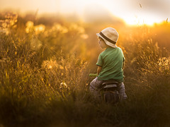 hello September (iwona_podlasinska) Tags: boy child childhood filed grass outdoor spiderweb summer sun sunset