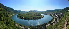 panoramic view over the Mosel (sharonjanssens) Tags: panorama view mosel germany moezel duitsland bremm outside nature landscape vineyard wine green hill outdoor ngc