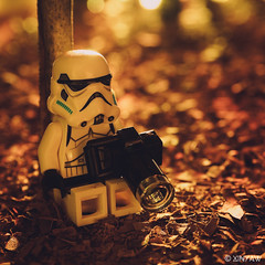 Moody Monday (XINYAW13) Tags: toy nature leaves leaf wood forest endor star wars starwars stormtrooper toys camera photographer lego toyphotography monday moody sitting tree dry fun outside olympus