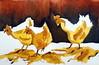 Three chickens, by Ana Paula  - DSC03880 (Dona Minúcia) Tags: art painting watercolor study paper animal bird chicken arte pintura aquarela galinha galo ave 3 three três