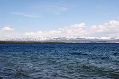 Lake Yellowstone (YuriZhuck) Tags: lake nature water us usa wy wayoming landscape shore yellowstone park