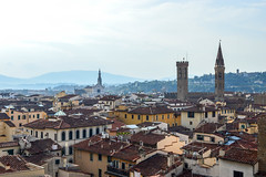 (ola_alexeeva) Tags:    art italy italian firenze florence painting roofs red top architecture