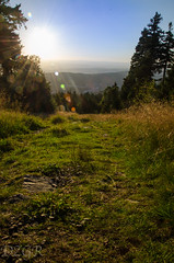 early sunset (YomDom) Tags: sunset feldberg taunus hessen sonnenuntergang strahlen warm sommer schn beauty summer sun grass green nature