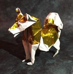 Husky (Baltorigamist) Tags: origami siberian husky malamute sled dog