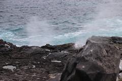 Blowholes (Harmonious Discord) Tags: galpagos blowhole espanolaisland