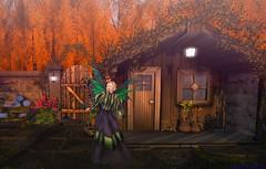 My magical garden is a charm against winter (gwen.enchanted) Tags: maitreya catwa lumae swallow spoonfulofsugar deathrowdesigns ayashi hairology avatarbizarre love arte theskinnery remarkableoblivion aviglam