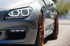 BMW 650i Gran Coupe - Vossen Forged Precision Series VPS-308 Wheels -  Vossen Wheels 2016 - 1019 (VossenWheels) Tags: 650i aftermarket ambertone bmw bmw6seriesforgedwheels bmw6seriesgrancoupe bmw6serieswheels bmw650i bmw650iforgedwheels bmw650iwheels bmwforgedaftermarketwheels bmwforgedwheels bmwgrancoupe bmwgrancoupewheels bmwm6 bmwm6aftermarketforgedwheels bmwm6aftermarketwheels bmwm6forgedwheels bmwm6wheels engineeredart forged forgedwheels graffiti grancoupe loweredbmw650i loweredbmwgrancoupe loweredbmwm6 m6 madeinmiami miami precision precisionseries vps vps308 vossen vossenbmw6series vossenbmwgrancoupe vossenbmwm6 vossenforged vossenforgedbmw6series vossenprecisionseries vossenvps vossenvps308 wynwood lowered
