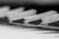 Pencils (Explore) (Cajofavi) Tags: macromondays ppep pencils graphite graphitepencils bw macro monochrome dof