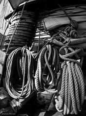 Ropes & Rigging (B&W) (_Sharkey_) Tags: copyrightsharkeyplender2016 tall ship navypier chicagoil ropes rigging detail