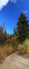 A View from Boise Ridge Road [pano_downhill] (trekkyandy) Tags: 8thstreet boiseridgeroad fall autumn autumn2016 panorama pano photomerge photoshop