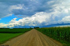 Travelling the Backroads (Explore!) (SCOTTS WORLD) Tags: adventure america clouds country color bluesky rural fun field vanishingpoint nature michigan midwest trees road digital view vegatation corn sky shadow sunlight summer stormy august light green grass greatlakesstate gravel gratiot panasonic pov perspective 2016 travel roadtrip telephonepole maize grain