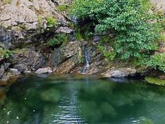 Swimming hole in the Trail of 2 Canyons, Ikaria (1) (egotoagrimi) Tags: trailoftwocanyons chalares erifi ryakas ikaria nudebathing wildswimming rivertrekking aegean greece     mountainravine angelspool october opsikarias