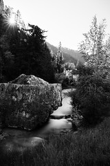 The Bend (red.morning.light) Tags: southdakota spearfishcanyon blackandwhite longexposure
